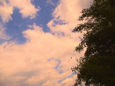Trees Photograph - Cloud Slide by Kendall Kessler