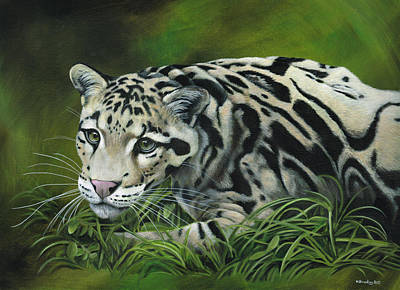 Leopard Painting - Clouded Leopard by Heather Bradley