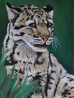 Painting - Clouded Leopard by Margaret Saheed