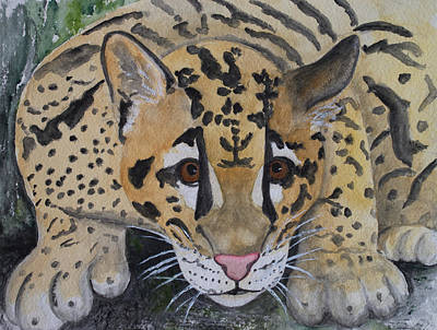 Painting - Clouded Leopard by Patricia Beebe