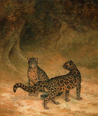 Indonesia Painting - Clouded Leopards Two Clouded Leopards Two Clouded Leopards by Litz Collection