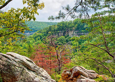 Photograph - Cloudland Canyon State Park Georgia by John M Bailey