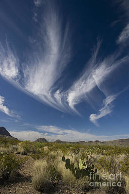 Photograph - Clouds Above Chihuahuan Desert, Big by Greg Dimijian