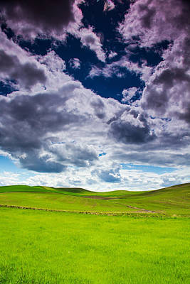Photograph - Clouds And Grass by Kunal Mehra