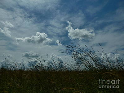 Clouds And Grass Art Print