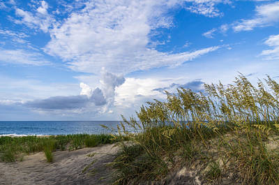 Art Print featuring the photograph Clouds And Sea Oats by Gregg Southard