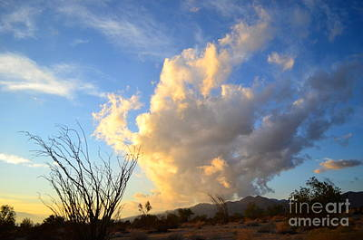 Photograph - Clouds Clouds Clouds by Johanne Peale