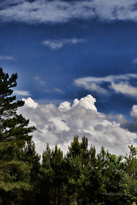 Photograph - Clouds Like Mountains Behind The Pines by Paulette B Wright