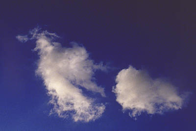 Photograph - Clouds by Mark Greenberg