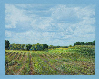 Corn Painting - Shadows Moving by Lynn Bywaters