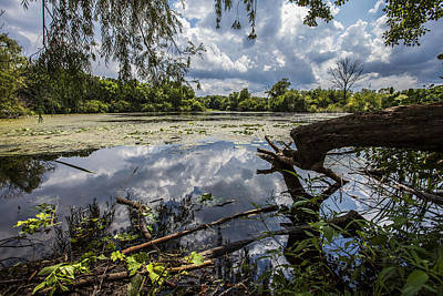 Nature Center Pond Photograph - Clouds On The Water by CJ Schmit