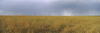 Clouds Over A Meadow, Masai Mara Art Print