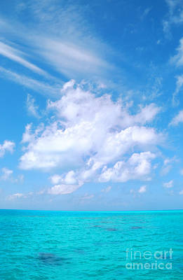 Photograph - Clouds Over Coral Reef by Charline Xia