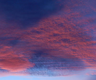 Photograph - Clouds by Pamela Walton