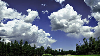 Photograph - Clouds - Ponderosa Pines Happy Jack Az by Bob and Nadine Johnston