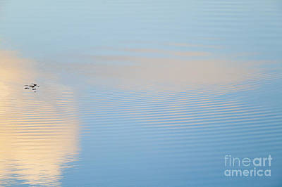 Photograph - Clouds Reflecting In A Rippling Pond by Don Landwehrle