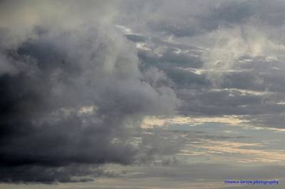 Photograph - Cloudy Day by Nance Larson