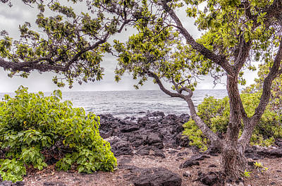 Hdr Photograph - Cloudy Day On The Kohala Coast by Jim Thompson