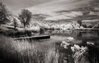 Photograph - Cloudy Day Pond... by Gary Rose