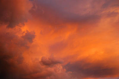 Fender Photograph - Cloudy Day by Sandi Fender