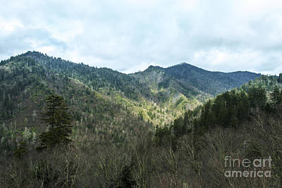 Photograph - Cloudy Mountain 2 by Michael Waters