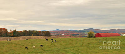Pasture Photograph - Cloudy Pasture by Charles Kozierok
