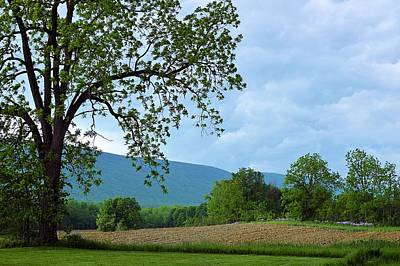 Photograph - Cloudy Spring Day In Millmont Pennsylvania by Joel E Blyler