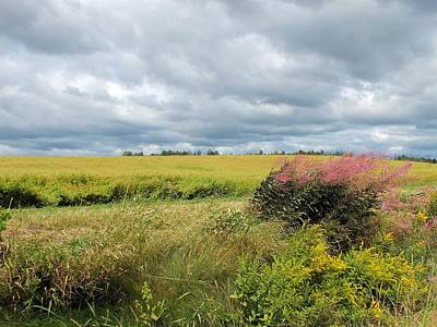 Photograph - Cloudy Summer Field by Gene Cyr