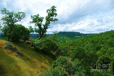 Tree Photograph - Clover Creek Scenery by Joshua Greeson