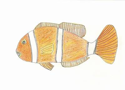 Drawing - Clown Fish by Helen Holden-Gladsky