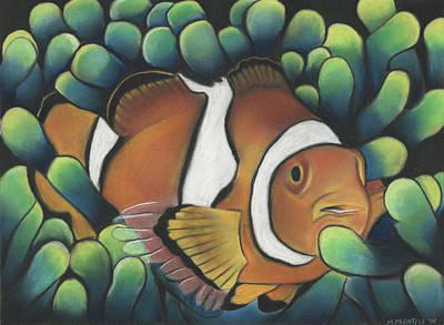 Clown Fish Drawing - Clown Fish by Michael Prentiss