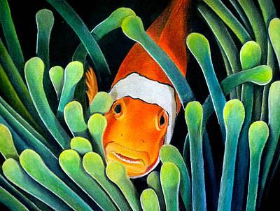 Clown Fish Drawing - Clown Fish by Obibi Art