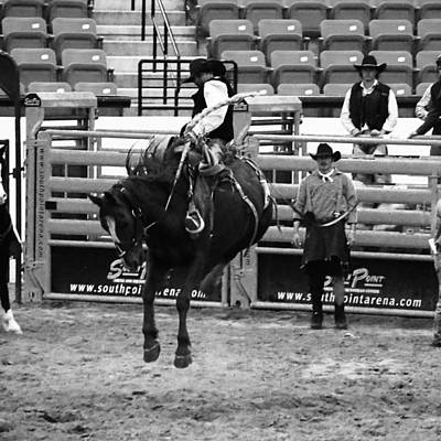 Photograph - Clown Watches Bronc Bw by C H Apperson