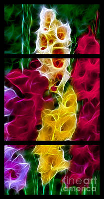 Cluster Of Gladiolas Triptych  Art Print by Peter Piatt
