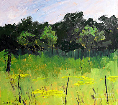 Indiana Landscapes Painting - Clusters Of Black-eyed Susans by Charlie Spear