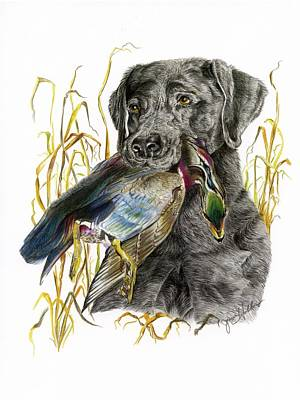 Duck Water Pencil Drawing - Clutch by Janis Hobbs