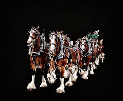 Clydesdales Hitch Art Print