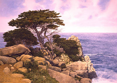 Coast At Lobos Art Print by Tom Wooldridge