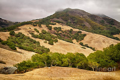 Photograph - Coast Hills by Alice Cahill