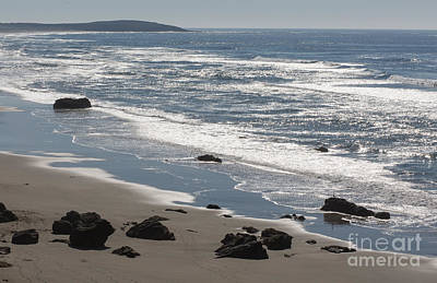 Coast Near Bodega Bay - 355 Art Print by Stephen Parker