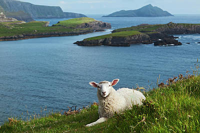 Portmagee Wall Art - Photograph - Coast Near Portmagee, Ring Of Kerry by Carl Bruemmer