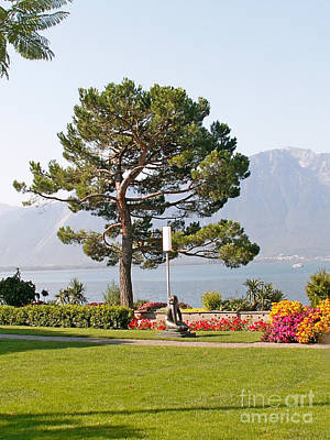 Coast Of Genevan Lake Original by Evgeny Pisarev