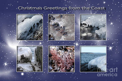 Photograph - Coastal Christmas by Randi Grace Nilsberg