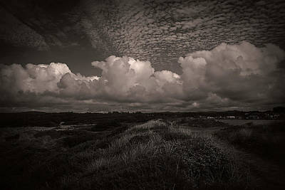 Photograph - Coastal Grasslands by Melanie Lankford Photography