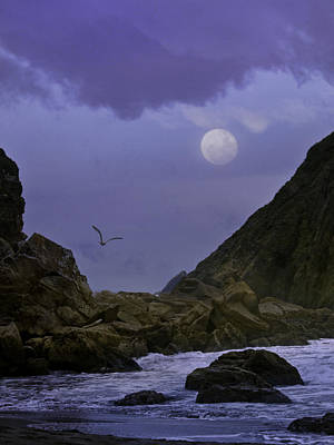 Coastal Moods Moonglo Art Print