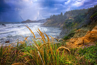 Driftwood Beach Fog Wall Art - Photograph - Coastal Oregon by Debra and Dave Vanderlaan