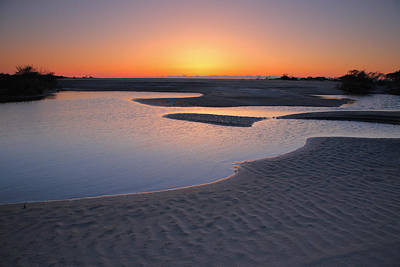 Coastal Ponds At Sunrise II Art Print by Steven Ainsworth