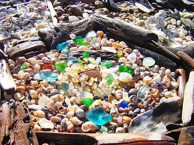 Coastal Seaglass Art Prins Shells Driftwood Art Print