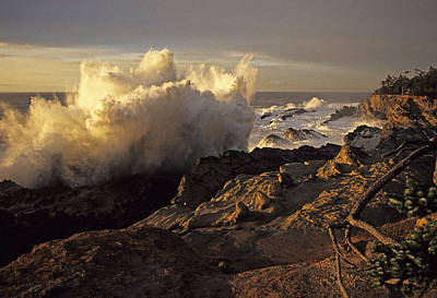 Photograph - Coastal Storm Wave by Doug Davidson
