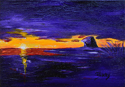 Painting - Coastal Sunset by Donna Blackhall